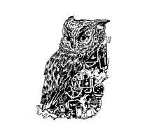 Inked Up Owl Photographic Print