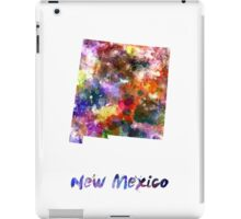New Mexico US state in watercolor iPad Case/Skin