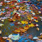Leaf Confetti by MarianBendeth