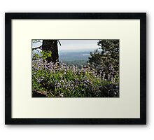 Time Flys Framed Print