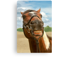 Animal - Horse - I finally got my braces off Canvas Print