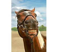 Animal - Horse - I finally got my braces off Photographic Print