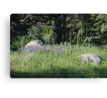 Patch of Paradise Canvas Print