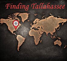 Finding Tallahassee 2 by colorfulmoniker