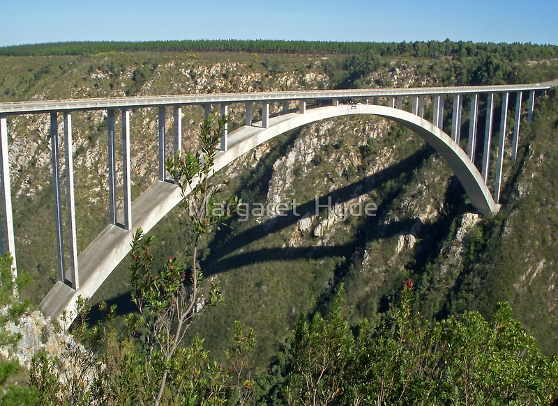 Bloukrans River Bridge, South Africa by Margaret  Hyde