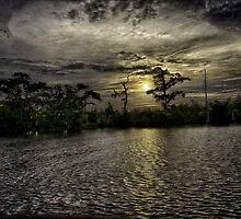 Golden Bayou by Nicholas Baudean