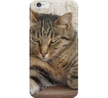 A picture is ok, but DO NOT TOUCH! iPhone Case/Skin