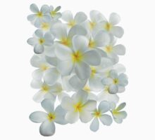 Frangipani - White and Yellow One Piece - Short Sleeve