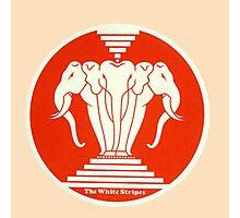 The white stripes - Elephant Photographic Print