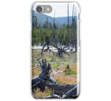 Dead Forest iPhone Case/Skin