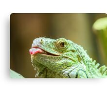 Green Iguana Reptile Portrait On Tree Branch Canvas Print
