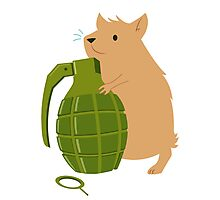 Hamster with a Handgrenade Photographic Print