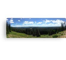 Panorama Canvas Print