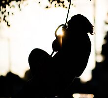 Swinging Sun by Christopher Schloegel