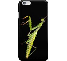 holy mantis iPhone Case/Skin