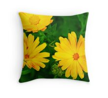 Flowers 10 Throw Pillow