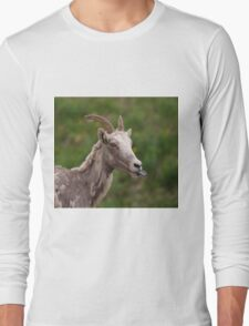 The  Mountain Goat Long Sleeve T-Shirt