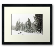 Snowstorm at Washoe Meadows State Park Framed Print