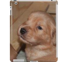 Adorable Golden Pups 2 iPad Case/Skin