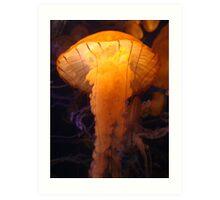 Luminescent Jelly Art Print