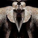 elephant god by tinncity