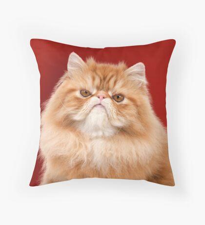 Grumpy Red Persian Cat Throw Pillow