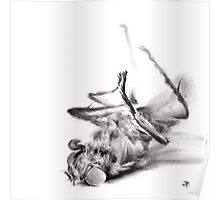little things too, senescence II - charcoal drawing Poster