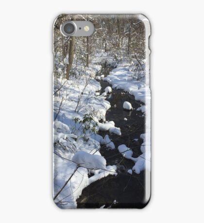 Stream in winter iPhone Case/Skin