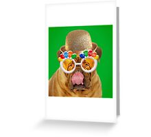 Douge De Bordeaux dog wearing Happy Birthday glasses Greeting Card