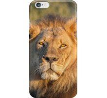 The King of Still Sleepy iPhone Case/Skin