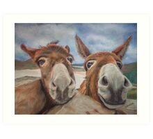 Donegal Donkey Duo Art Print