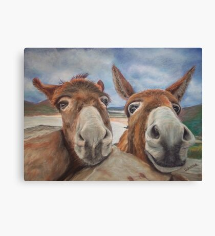 Donegal Donkey Duo Canvas Print