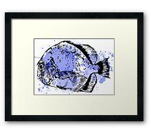 Watercolor fish. Framed Print