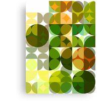 Cactus Garden Abstract Circles 3 Canvas Print