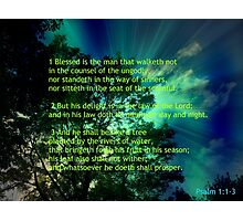 Blessed are the righteous - Psalm 1 Photographic Print
