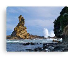 Australia Rock, Inverloch, Victoria, Australia. Canvas Print
