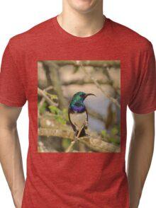 White Belly Sunbird - African Wild Birds of Iridescent Beauty Tri-blend T-Shirt