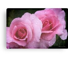 Raindrops on Roses ~ Yesterday's Tears Canvas Print