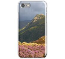 Moody Heather iPhone Case/Skin