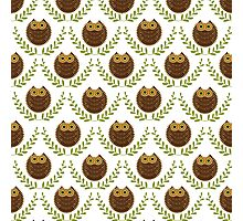 Cute Brown owls Green Wreath Seamless Pattern Photographic Print