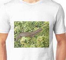 Skink on Asparagus blossoms Unisex T-Shirt