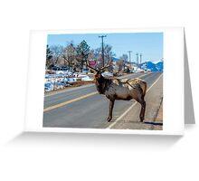 Traffic Greeting Card