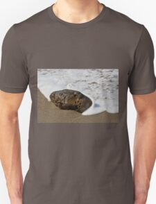 rock at the tide line- Greyhound Rock cove Unisex T-Shirt