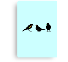 3 little birds Canvas Print