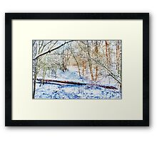 Forest in the Snow HDR Framed Print
