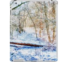 Forest in the Snow HDR iPad Case/Skin