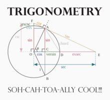 Trigonometry by PharisaicalJesu