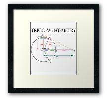 Trigonometry? Framed Print