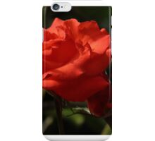 Love is.... iPhone Case/Skin