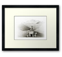 waiting in the desert Framed Print